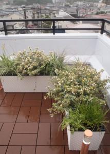 バルコニー用の花壇